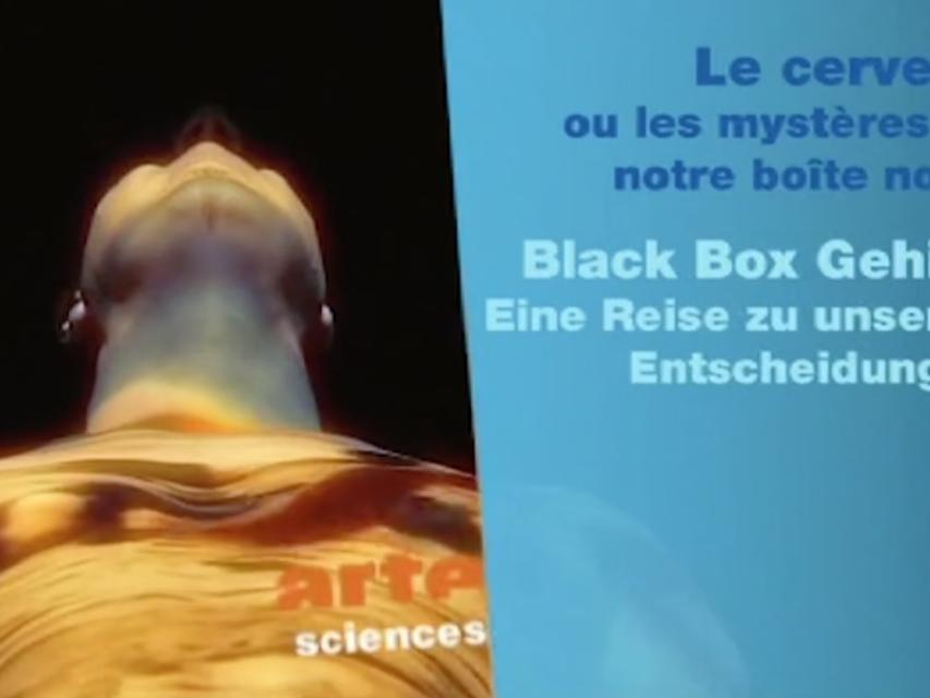 BLACK BOX GEHIRN